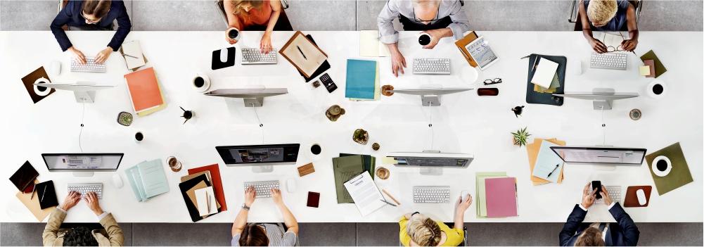 organização ambiente corporativo