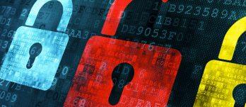 Segurança da informação nas empresas: proteção da rede, sistemas atualizados e educação dos usuários